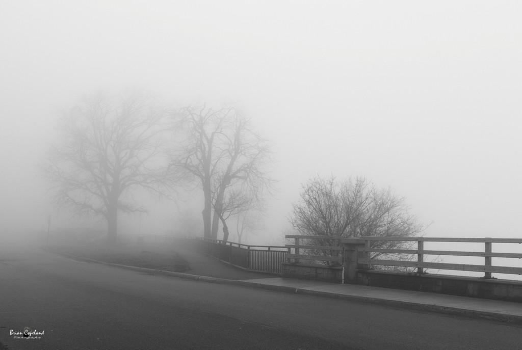 A-very-foggy-Hamilton.jpg