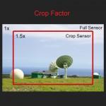 Lessom 21 full frame crop sensor