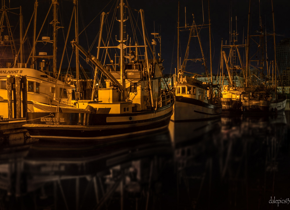 Fishing-Fleet-by-Dale-2.jpg