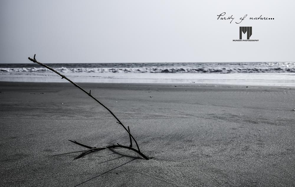 purity-of-nature-sea.jpg