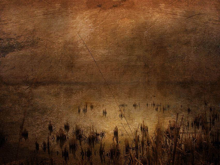 Academy-Pond-texture-copy-1.jpg