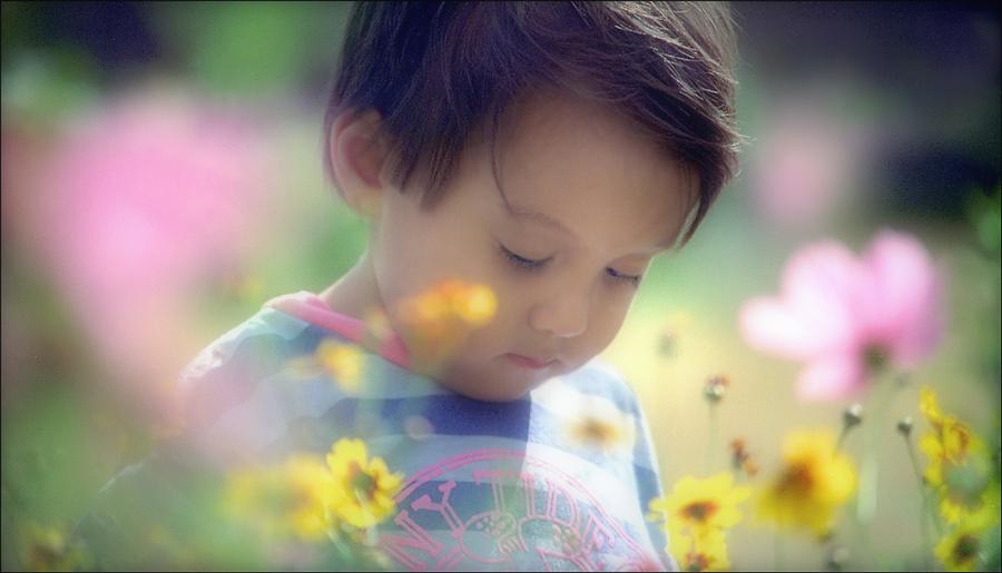 Sean-In-Wildflowers-copy.jpg