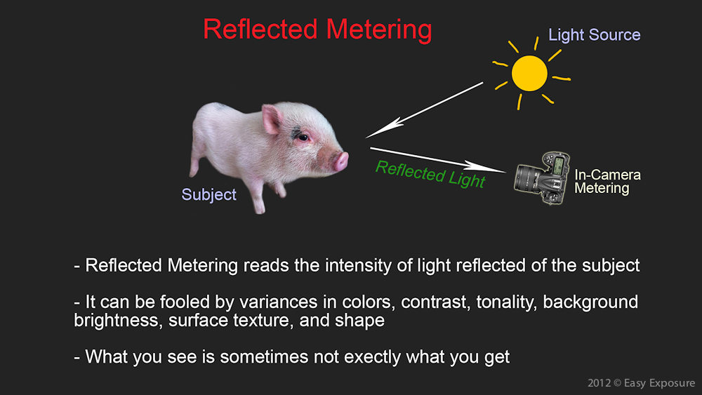 photography tutorial on reflected light metering